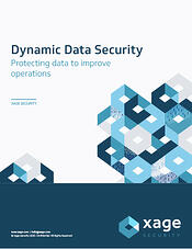 resource_0011_Dynamic Data Security